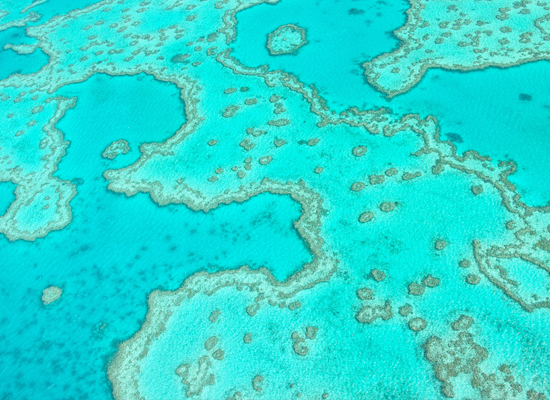 Das Great Barrier Reef von oben nahe der Whitsunday Islands  © atiger / Shutterstock