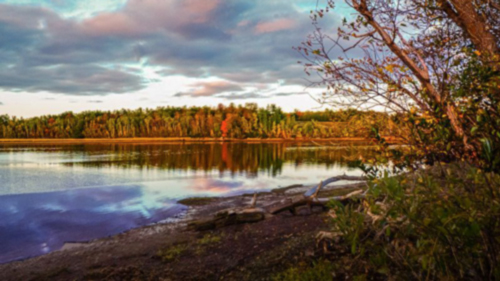 Herbst-Farben am Waughs River auf Nova Scotia - (Foto: ©Dinyar Chavda/Lonely Planet)