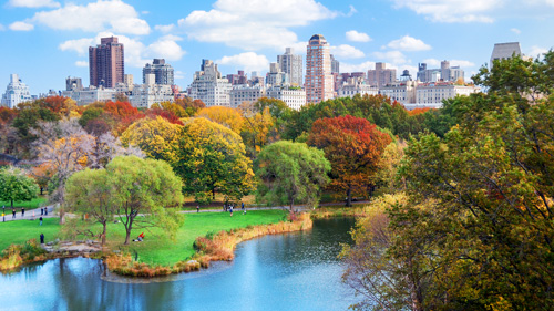 Central Park, New York - (Foto: © Songquan Deng/Shutterstock Royalty Free)
