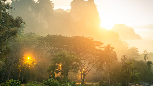 Berge des Khao Sok Nationalparks in Thailand - (Foto: ©ViewApart/iStock.com)
