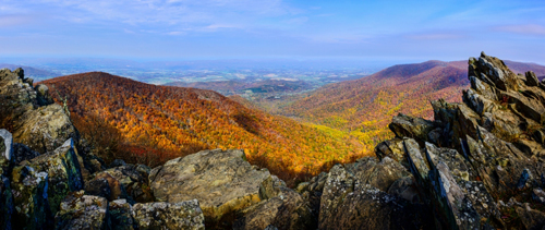 Shenandoah National Park Wald - (Foto: © OGphoto, Getty Images)