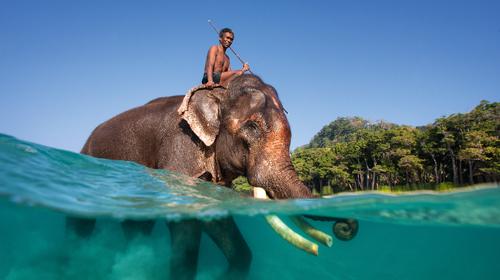 Perlen im Indischen Ozean
